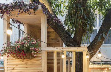 Paisagismo e casinha na árvore
